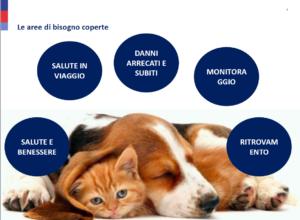Sanitaria Cane e Gatto